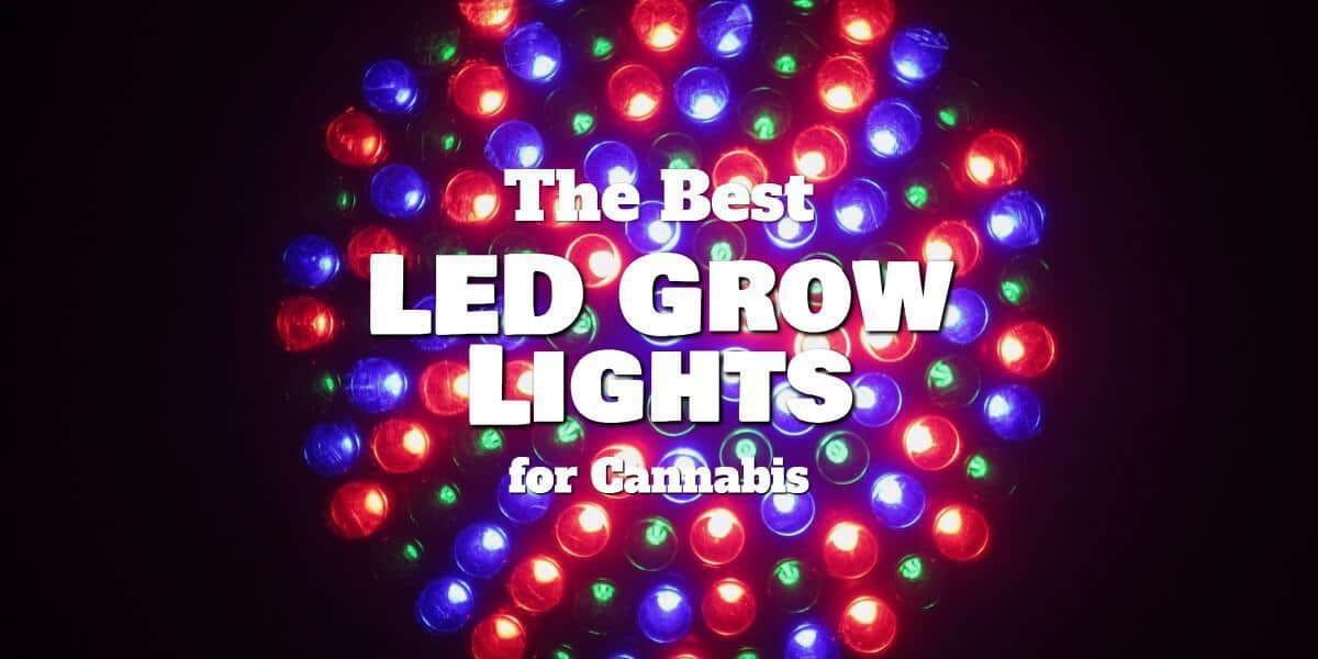 Featured image of our LED grow light review article