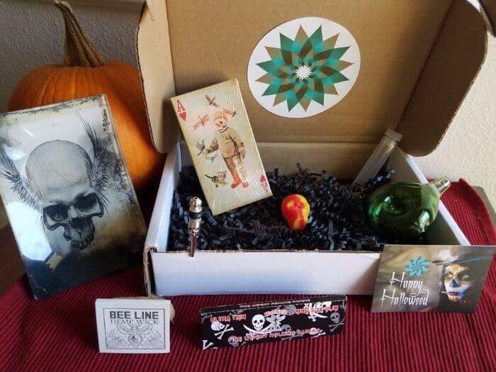 Sensi Box Review