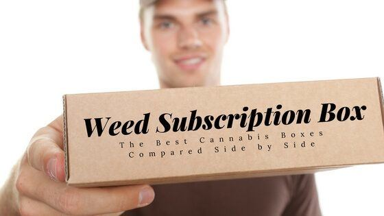 Marijuana subscription box Reviews Featured Image