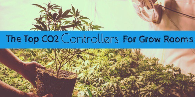 Best co2 Controller for Grow Room