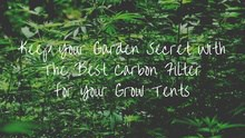 Best Carbon Filter for Grow Tent