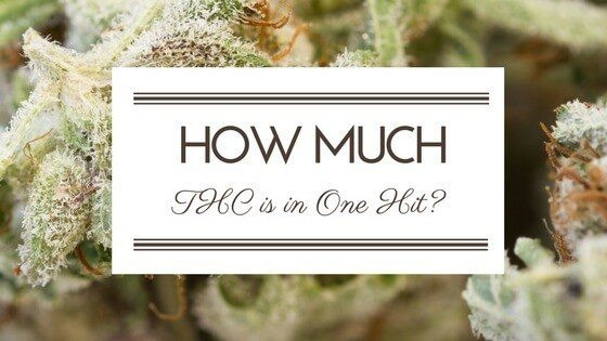 How Much THC is in One Hit