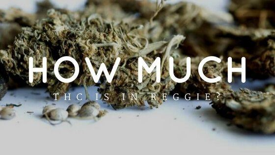 How Much THC Is In Reggie