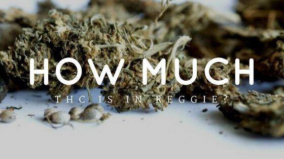 How Much THC Is In Reggie