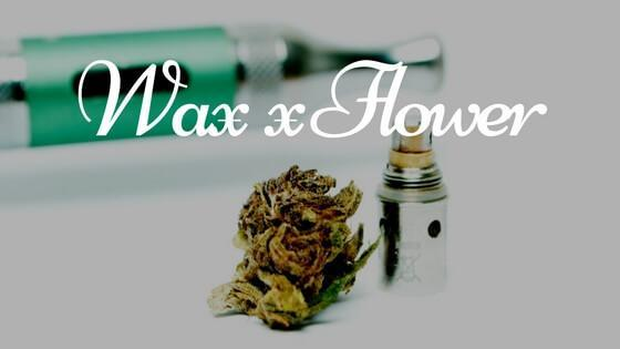 Wax vs Flower