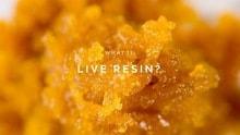 Live Resin