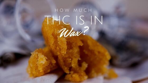 How Much THC Is In Wax