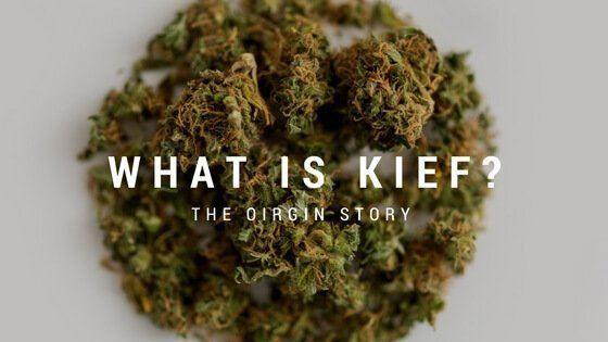 What is Kief