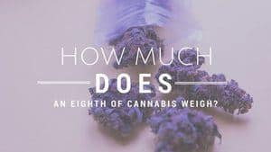 How Much Does An Eighth of Weed Weigh
