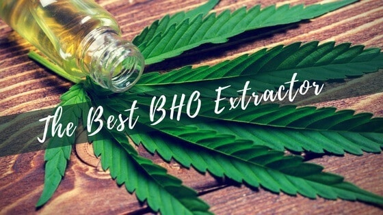 Best BHO Extractor
