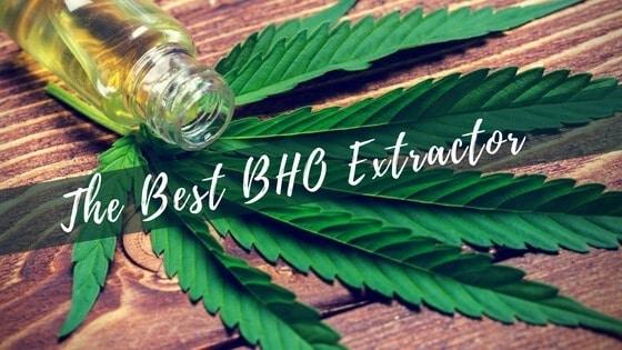 Best BHO Extractor