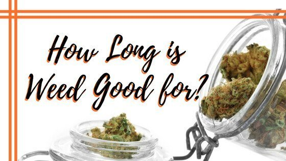 How Long is Weed Good For