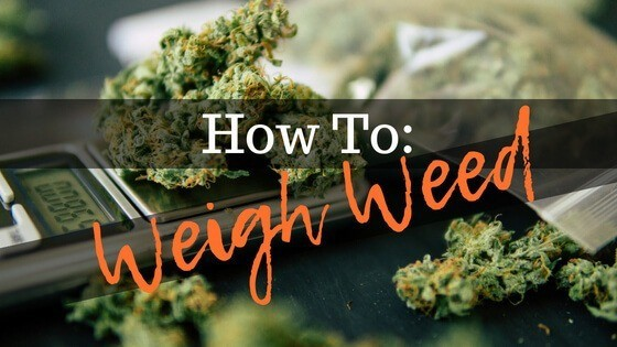 How to Weigh Weed