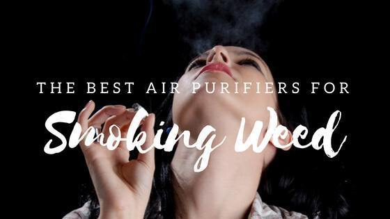 Best Air Purifier for Smoking Weed