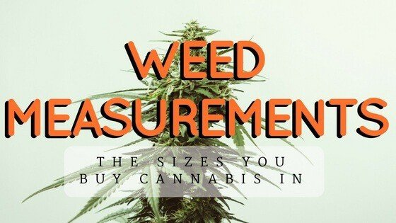 Weed Measurements And Prices Know What To Expect From Your Dispensary