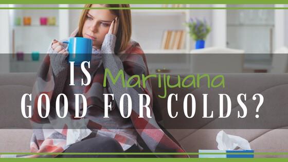 Is Marijuana Good for Colds