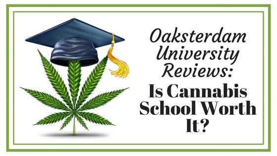 Oaksterdam University Reviews