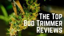 Bud Trimmer Reviews
