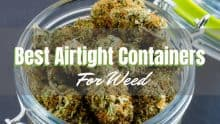 Best Airtight Cases for Weed