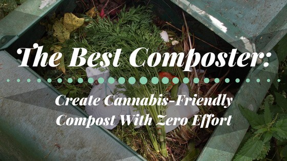 Best Composter