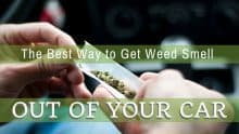 Best Way to Get Weed Smell Out of Car