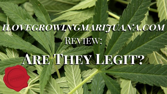 ilovegrowingmarijuana.com Review