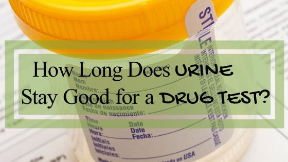 How Long Does Urine Stay Good for a Drug Test