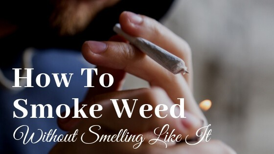 Smoke Weed Without Smell
