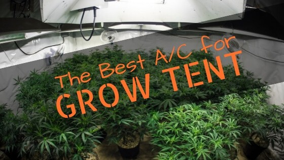 The Best Ac For Your Grow Tent In 2019
