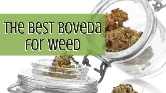 Best Boveda for Weed