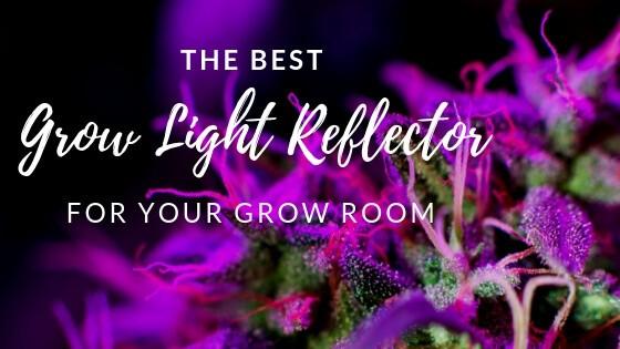 Best Grow Light Reflector