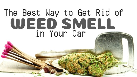 How to Get Weed Smell Out of Car