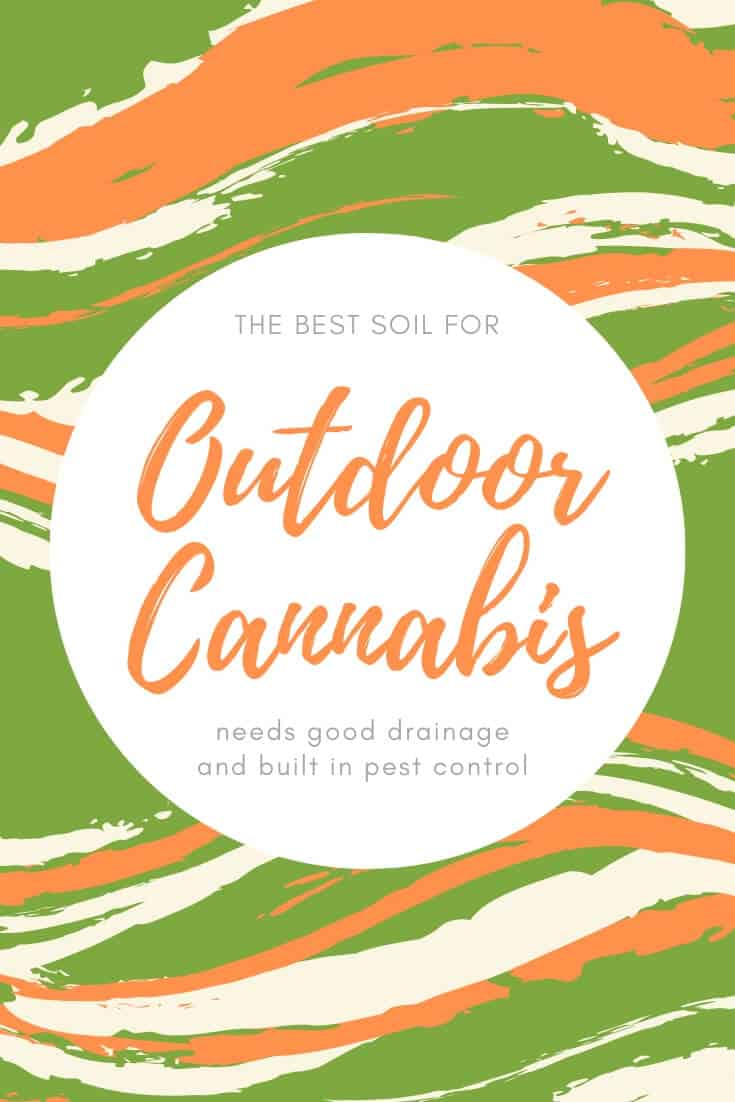 Best soil for cannabis outdoors